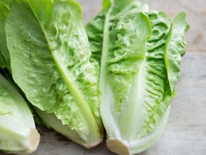 Lettuce, Little Gems, each