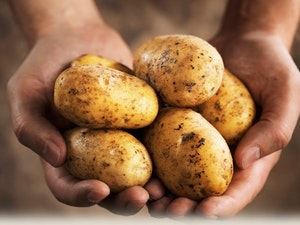 Potatoes, Melody, 1kg