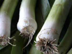 Leeks,  500g approx (2 or 3 stalks)