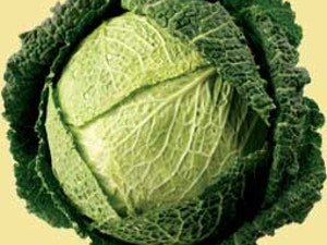 Cabbage, Savoy, each