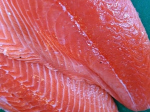 Salmon Fillets. from 200g