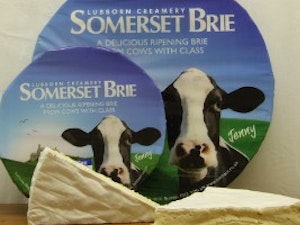 Cricket St Thomas Brie Whole Cheese, 1kg