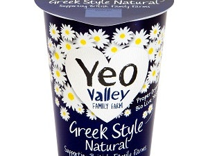 Organic Greek Style Natural Yoghurt 450g.