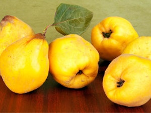 Quince, Organic, 1kg