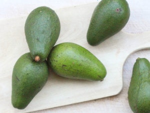 Avocado, each