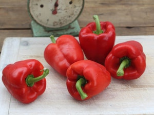 Sweet Pepper, Red, each