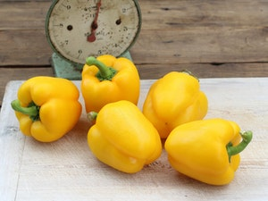 Sweet Pepper, Yellow, each