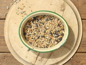 Wild Bird Seed Mix, 1 kg.