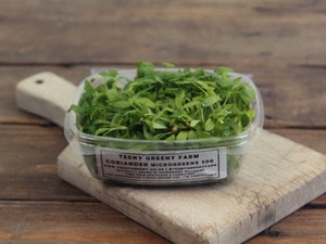 Naturally Grown Coriander Micro-greens 30g