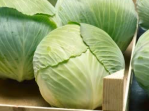 Cabbage, Primo, each