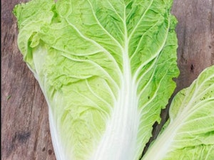 Lettuce, Chinese Leaf, each