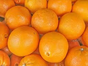 Oranges, medium, bag of 5