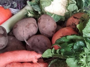 Seasonal Vegetable Bundle, Organic Small