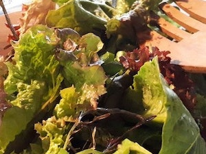 Salad Bags, Mixed Leaves with Herbs, 100g