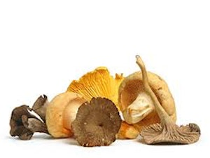 Mushrooms, Wild Mixed, 200g