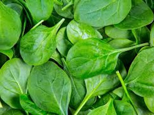 Spinach, Organic, 200g pack