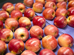 Apples, Organic Mixed Varieties, 750g