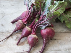 Beetroot, Organic Red, bunch