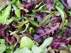 Salad Bag, Organic Mixed Leaves, 100g