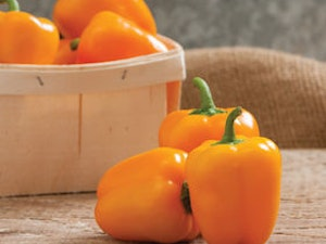 Sweet Pepper, Orange, each