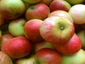 Apples, Discovery, English,1kg