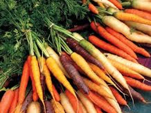 Carrots, Organic Washed, Rainbow, 750g