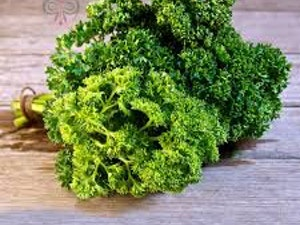 Parsley, Organic Curly Leaf, 30g