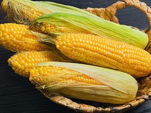 Sweetcorn Cob, Organic, each