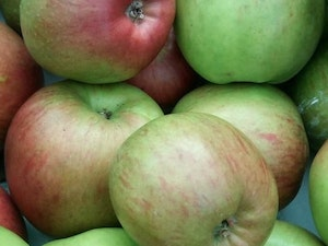 Apples, Encore, Cooking Apple, 1kg