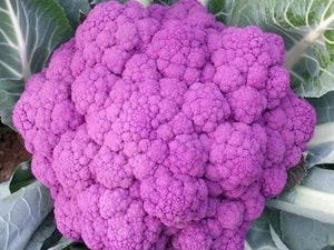 Cauliflower, Organic Purple, each