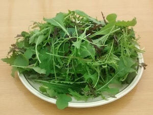 Salad Bag, Organic Oriental Mixed Leaves, 100g