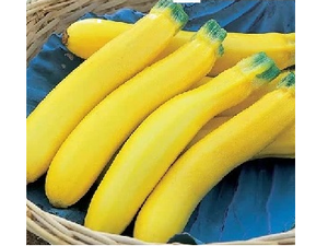 Courgette, Yellow, 400g (UK)