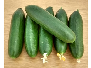 Cucumbers, Mini, Organic, Each