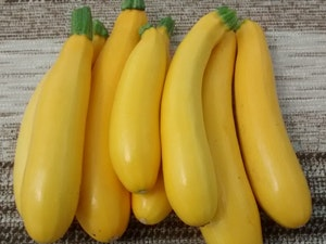 Courgettes, Yellow, Organic, Local, 400gms