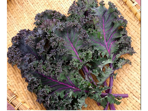 Organic Red Curly Kale, 300g